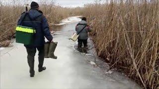 Опасный лёд Зимняя рыбалка Старицы реки Припять Лаховка Первый спонсор канала