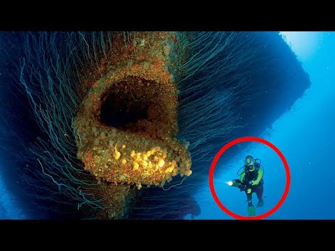 5 Strangest Ocean Phenomena Caught on Camera & Spotted in Real Life
