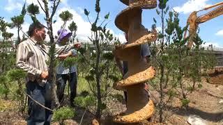 jbc까 땅굴 종북-인천작전스케치영상(2편)-복진국 김정은