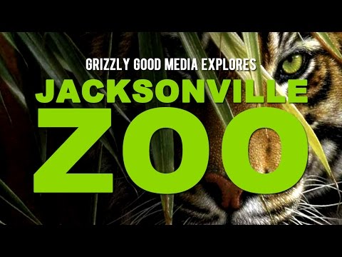 Jacksonville Zoo and Gardens Adventure
