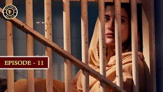 Surkh Chandni | Episode 11 | Top Pakistani Drama