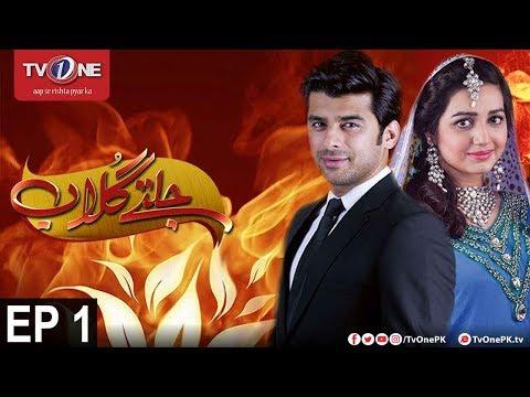 Jaltay Gulab | Episode 1 | TV One Classics | 10th November 2017