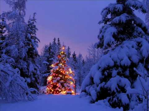 JOSEPH WILLIAMS (TOTO)-CHRISTMAS EVE