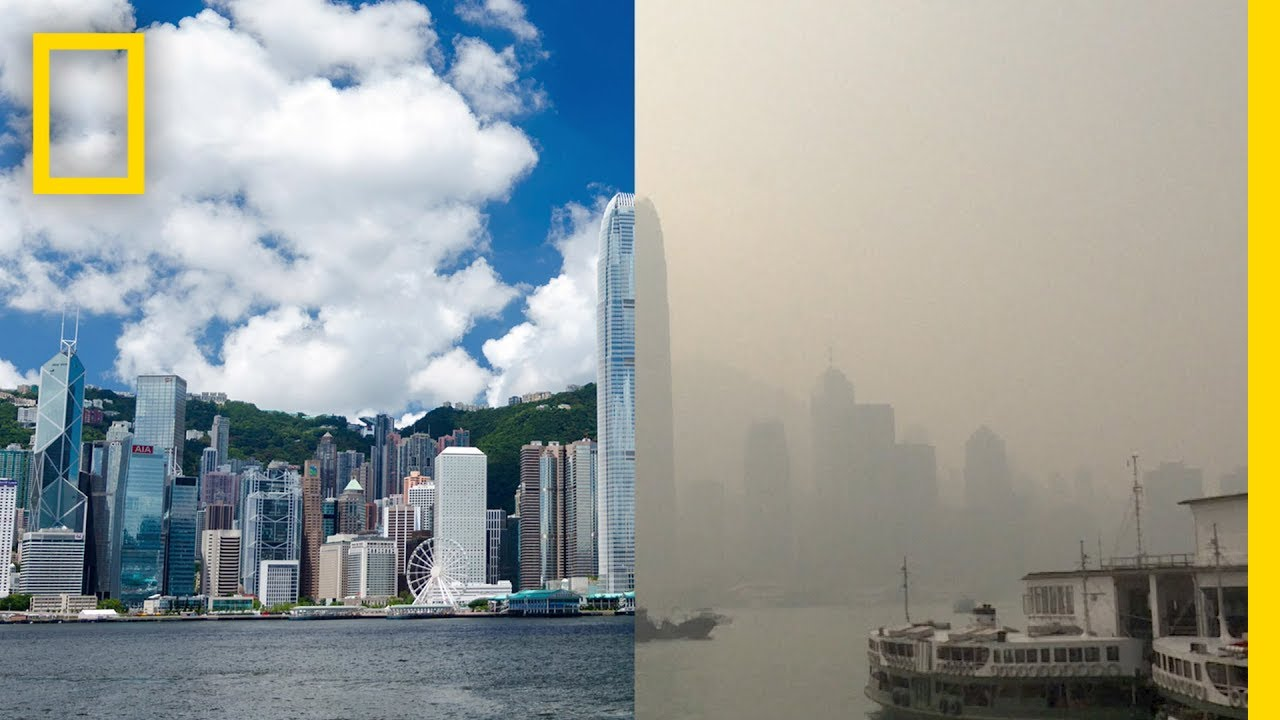 Port of Hong Kong