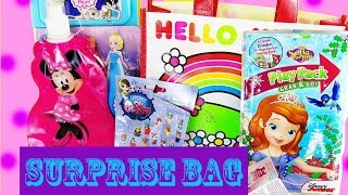 MLP Press on Nails in this Surprise Bag Cinderella, Elsa and Sophia the First, too.