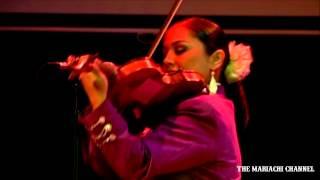 EL BALAJU | MARIACHI REYNA de Los Angele...