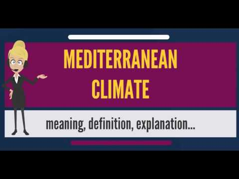 What is MEDITERRANEAN CLIMATE? What does MEDITERRANEAN CLIMATE mean?