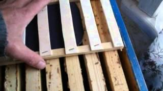 Пчеловодство - 16 зим без потерь(Помощь пчелам пережить длительную зиму .Для этого используют лепешки канди. Но самое главное правильно..., 2013-12-24T12:46:04.000Z)