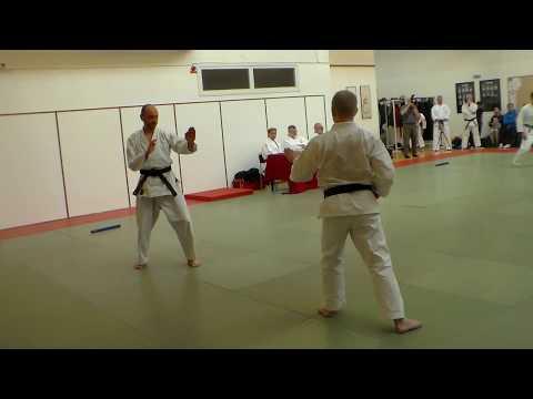 Ju-jutsu Kai, Gradering 3 dan, Martin Klarqvist, 2017-05-07