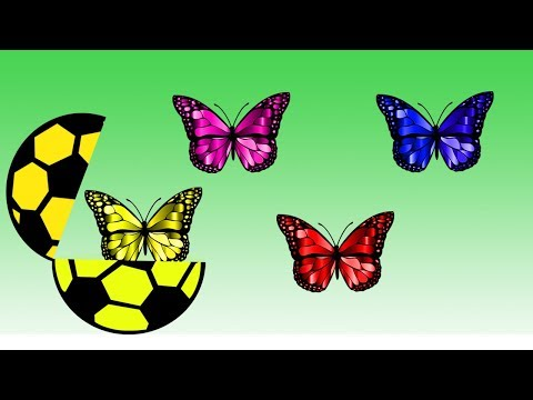Soccer Ball Colors Learn With Butterfly || Butterfly Colors || Video For Children thumbnail