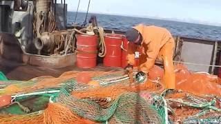 Рыбалка в Охотском море