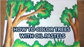 How To Draw And Colouring Grass Youtube