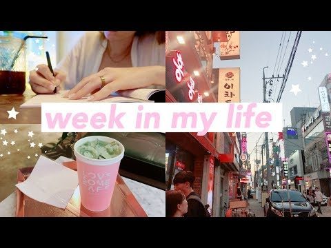 A WEEK IN MY LIFE working in Busan, Korea