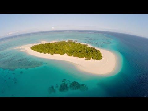 Dive   Zanzibar   Mnemba Island