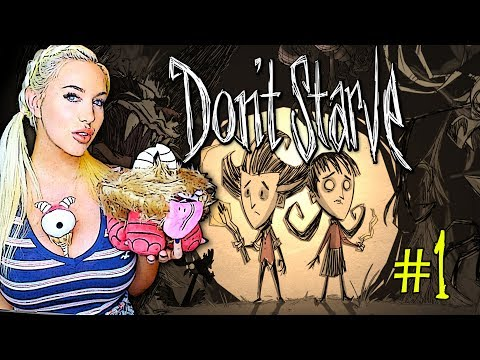 I WISH YOU HAD A BUSH! - Don't Starve Together #1