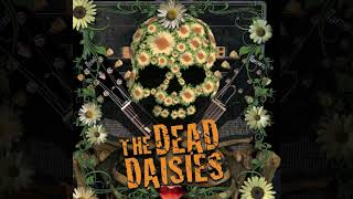Watch Dead Daisies Bible Row video