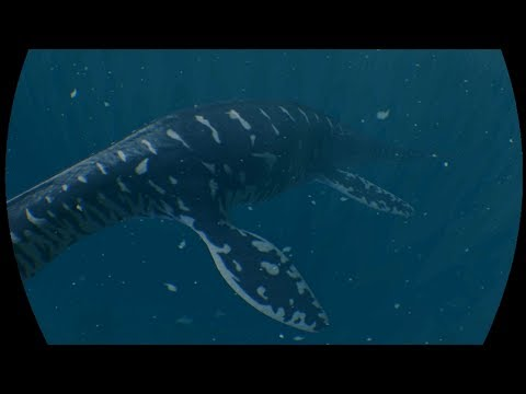 VR Pliosaur Animation Test 2