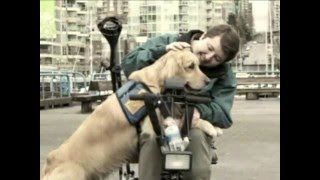 Pacific Assistance Dogs Society