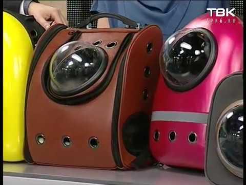 Рюкзаки с иллюминатором для кошек и собак