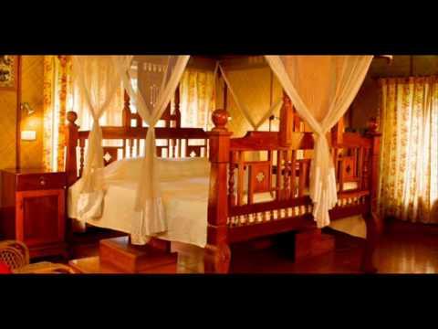 India Kerala Nattika Kadappuram Beach Resort India Hotels Travel Ecotourism Travel To Care