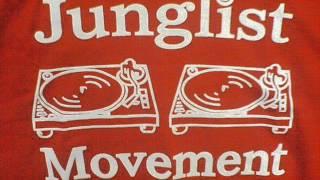 Drum and Bass junglist mix