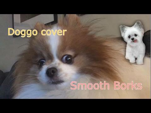 alien dog farm - Smooth borks