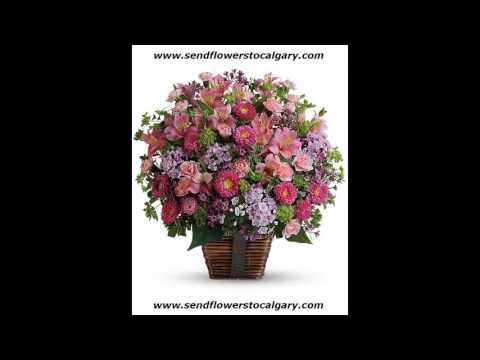 Send flowers from Kuwait to Calgary Alberta Canada
