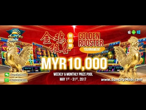 Golden Rooster 金雞報喜