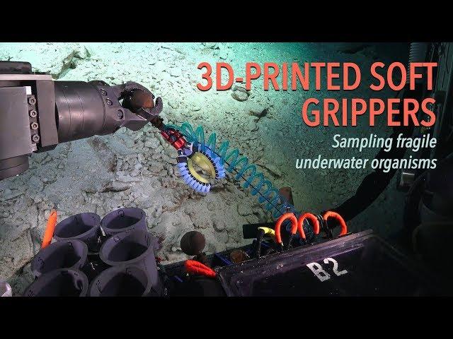 3D Printed Soft Grippers: Sampling fragile underwater organisms
