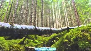 Лучшие видео You Tube 2012