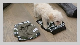 PUPPY PICKS OUTFIT!!! | iJustine