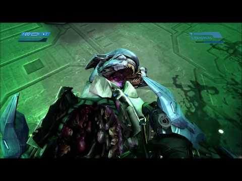 Halo 1  Secret Mangled Elite Bodies REVISITED