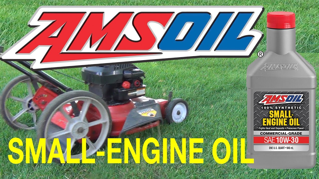 Amsoil Synthetic Small Engine Oil 10w 30 Fuel Ilizer
