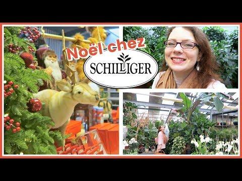 SHOPPING JARDINERIE - Marché de Noël et Achats Plantes chez Schilliger | Avec La Route de Ben