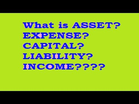 What is Asset? Expense? Capital? Liability? Income?????