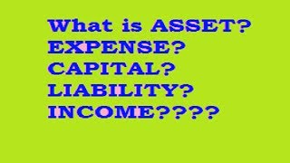 What is Asset? Expense? Capital? Liability? Income/revenue/gain?????