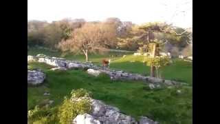Great Urswick, Cumbria