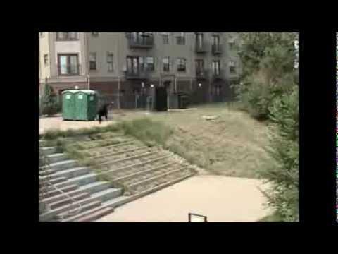 The Skate  - Jim Greco