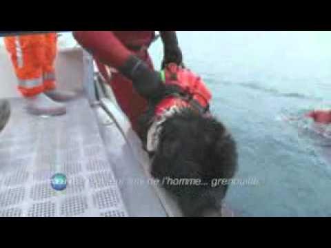 Simulacro de rescate acuatíco Terranova