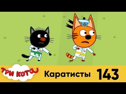 Три Кота | Серия 143 | Каратисты | Мультфильмы для детей