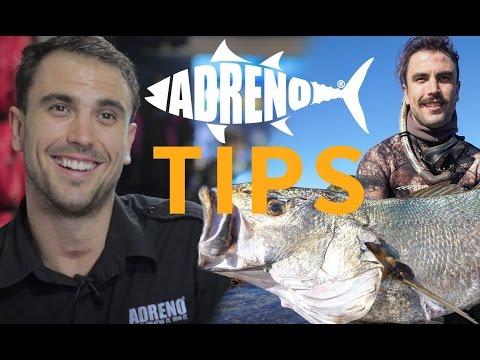 Spearfishing Jewfish Tutorial | ADRENO