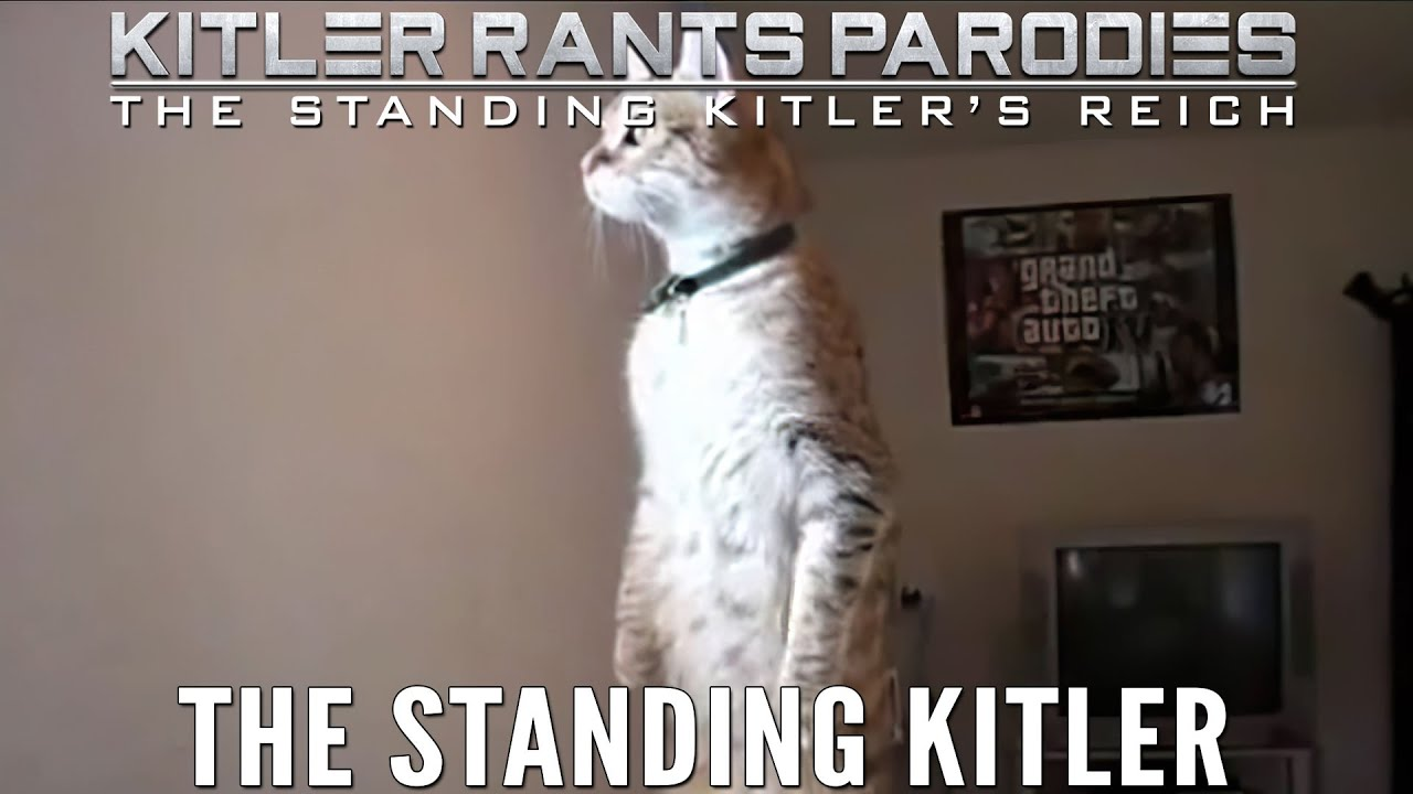 The Standing Kitler