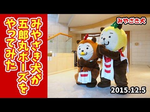 【みやざき犬】五郎丸ポーズをやってみた (20151205)