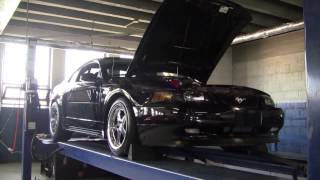 2V Mustang GT D1SC Dyno Pull on E85 - Almost hit 700RWHP!
