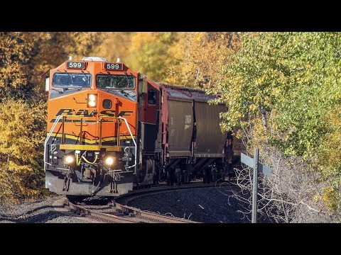 Railfanning Whitefish, MT Part 2 // Trinity Rail Productions