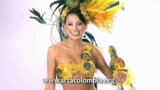 Señorita Quíndio - Nombre del traje  Loro Orejiamarillo.