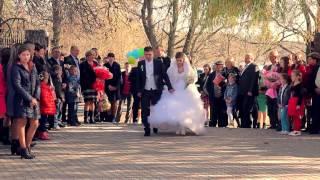 Свадебный видеооператор на свадьбу Винница.Браилов