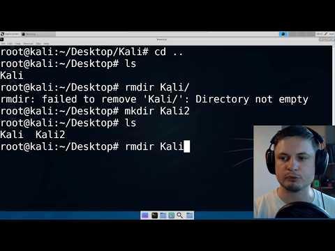 Kali Linux: Основные команды Linux для начинающих