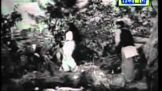 Thullioodum - Tamil Romantic Song - Periya Idathu Penn - MGR, Saroja Devi