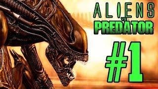 vuclip Aliens Vs Predator Campaña Marines Completa [ Parte 1 de 2 ] en Español